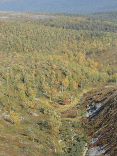 Koilliskaira 2013 081
