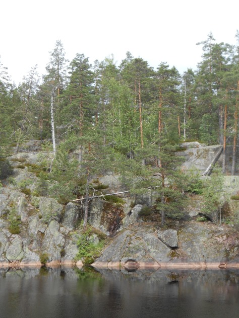Nuuksio_P 051