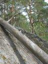 Nuuksio_P 055