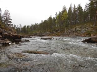 Koilliskaira 2013 017