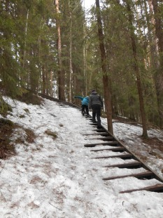 Neulamäki_kevät_2015 206