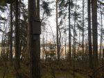 Skatanniemi 069