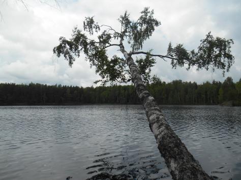 Sipoonkorpi_kesäkuu 043