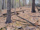 Paistjärvi_2014 091