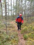 Paistjärvi_2014 100