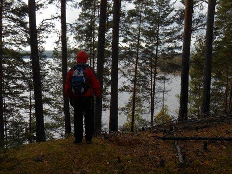 Paistjärvi_2014 107