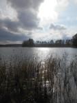 Paistjärvi_2014 134