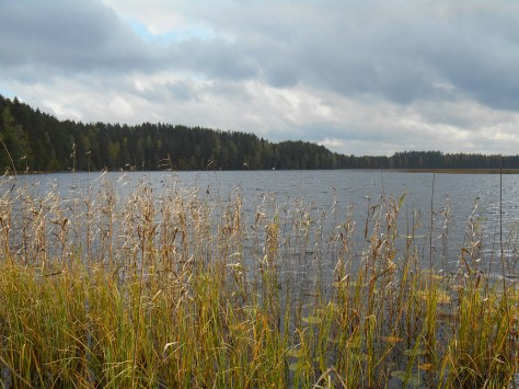 Paistjärvi_2014 138
