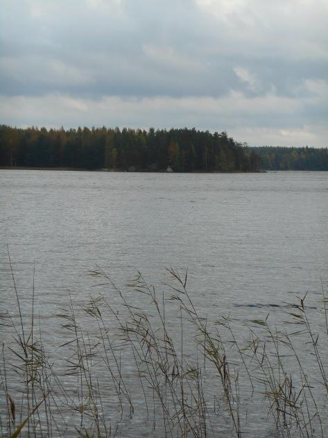 Paistjärvi_2014 143