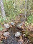 Paistjärvi_2014 158