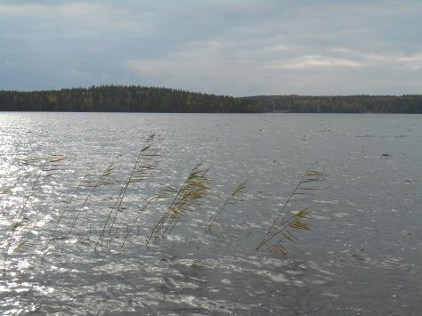 Paistjärvi_2014 161