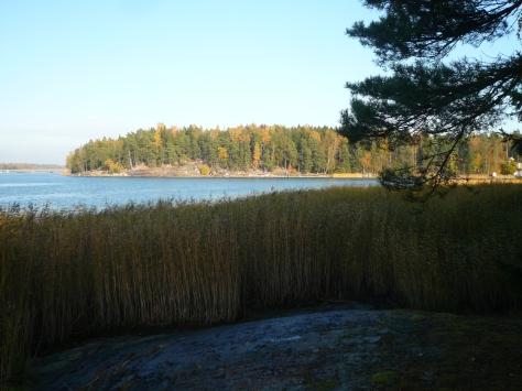 Ramsinniemi_loka15 272