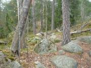 Hertsika_Hallainvuori 125