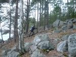 Meri-Rastilan metsät 058