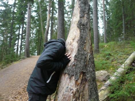 Meri-Rastilan metsät 169