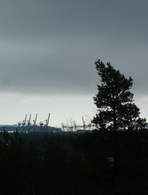 Kasakallio_Talosaari 057