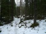 Kasakallio_Talosaari 067