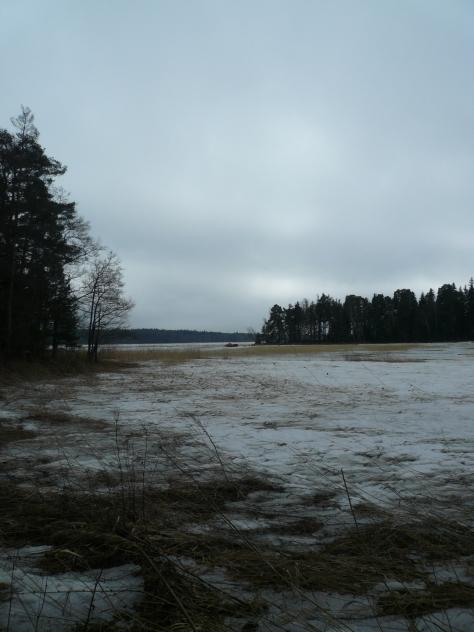 Kasakallio_Talosaari 101