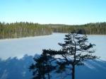 Nuuksio_Vaakkoi_Pirttimäki 383